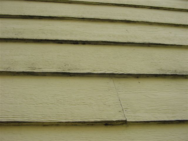 Rot and mold in siding