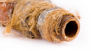 pipe replacement seattle corroded pipes