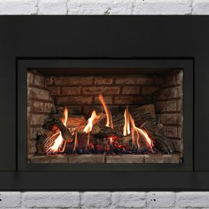 Archgard DVI 31 gas fireplace insert seattle wa